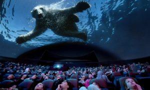 cinema, cinéma, cinémas, cinémas insolites, Imax, cinéma en immersion, nouvelles technologies, sortie insolite